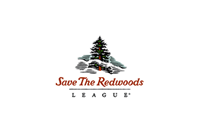 Save the Redwoods League Protects Nearly 15,000 Acres in Mendocino County Image