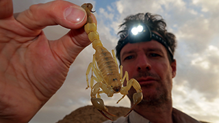 man holding a scorpion by its tail