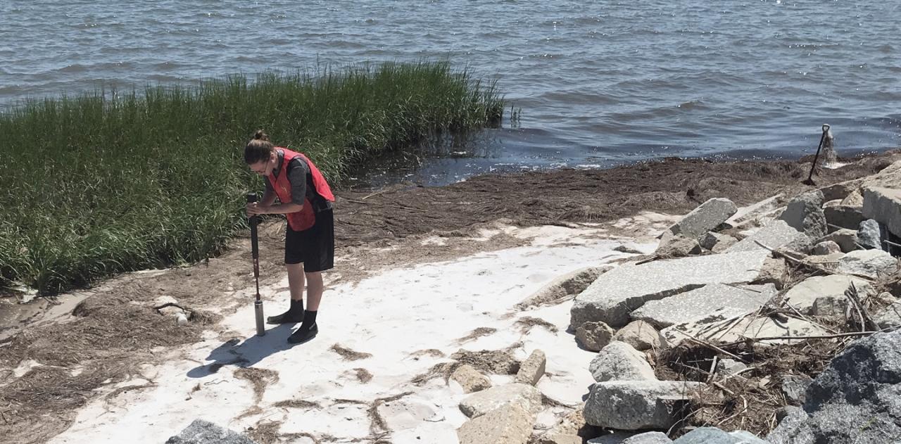 scientist testing along a shoreline