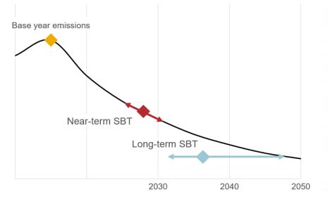 Figure 1: Near-term SBTs compared to long-term SBTs