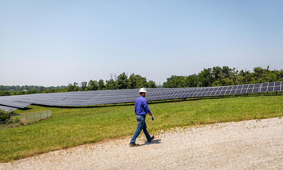Worker walking amongst solar field