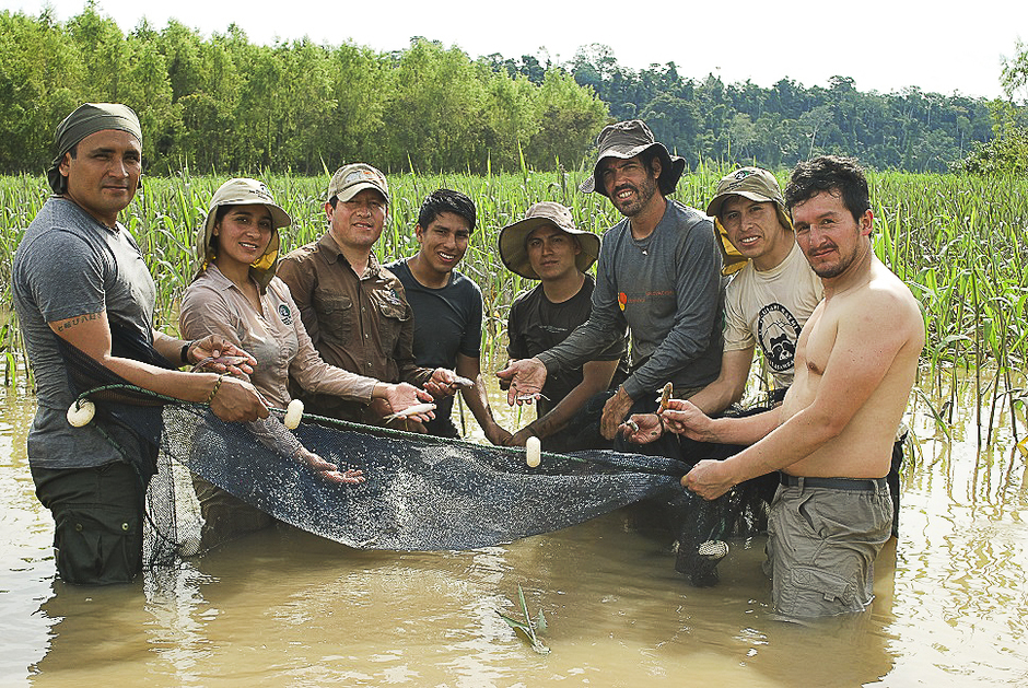 The team from The Center for Scientific Innovation in the Amazon (CINCIA) and FZS Peru doing a mercury sampling, having joined forces to conduct studies on mercury contamination in the Manu National Park (PN), in the Madre de Dios region. Photo: The Peru Program of Frankfurt Zoological Society.