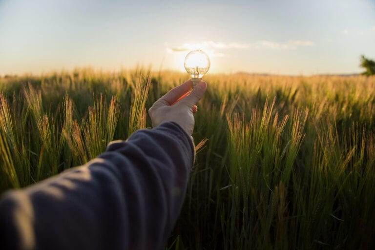 someone holding a lightbulb over a field of grass into the sunset