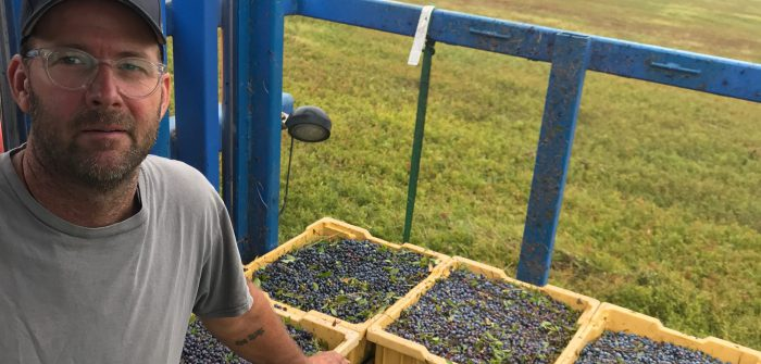 For Maine blueberry farmer Seth Kroeck, the pandemic made clear that lending to small and medium-sized farms needs to become easier and more flexible - and CDFis can help.