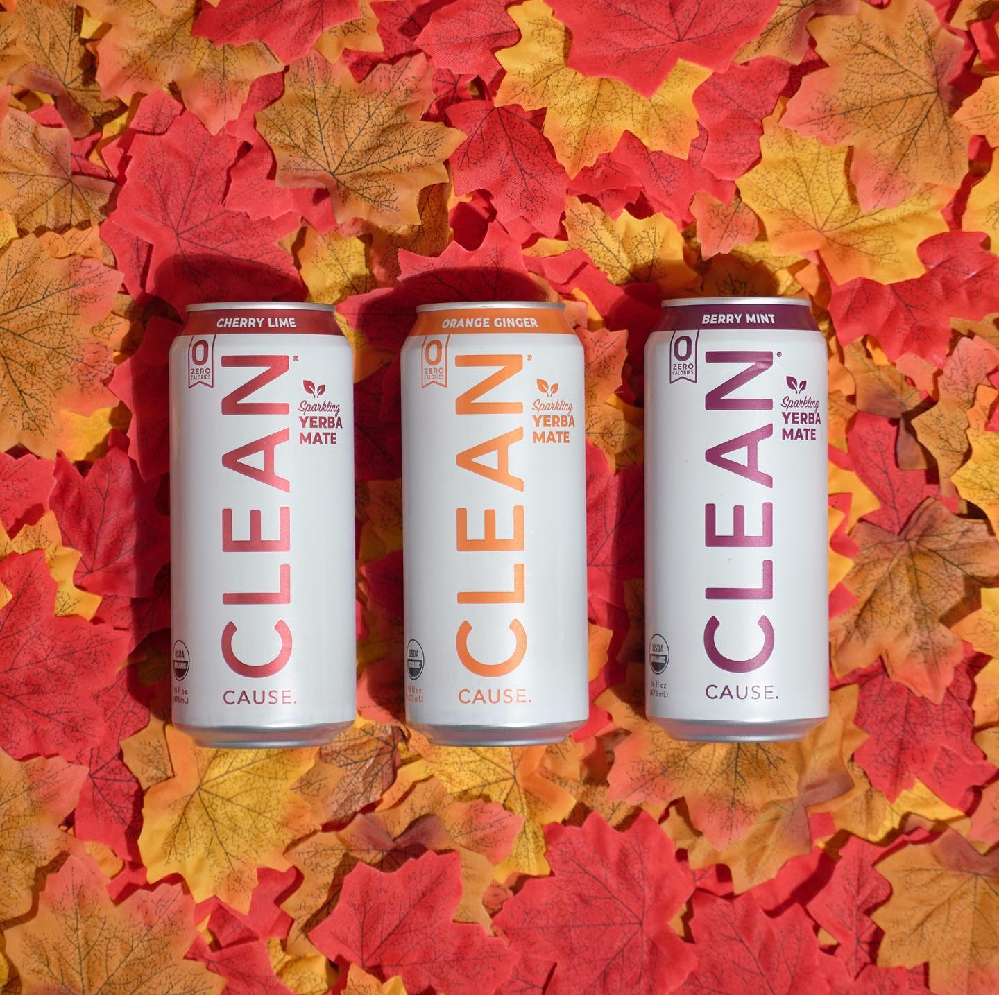 Fizzy with a boost of caffeine, Clean Cause takes a different social responsibility approach