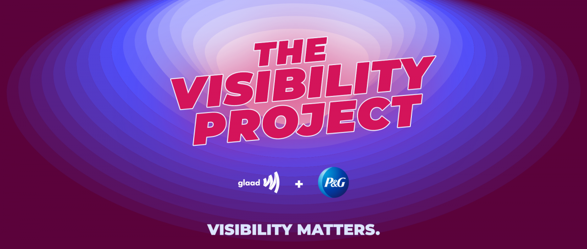 The Visibility Project logo