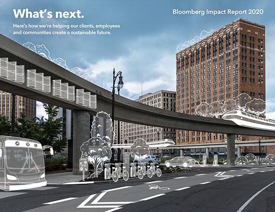 Bloomberg Impact Report 2020