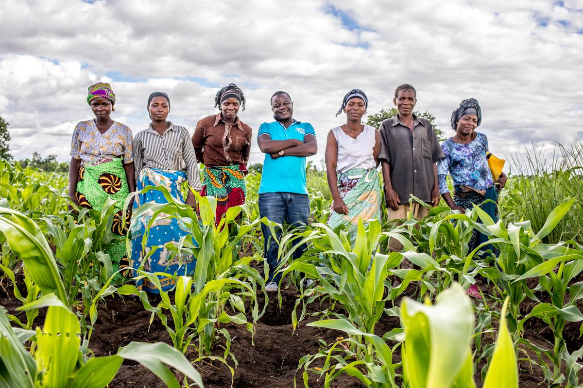 Community members in a field in Malawi.