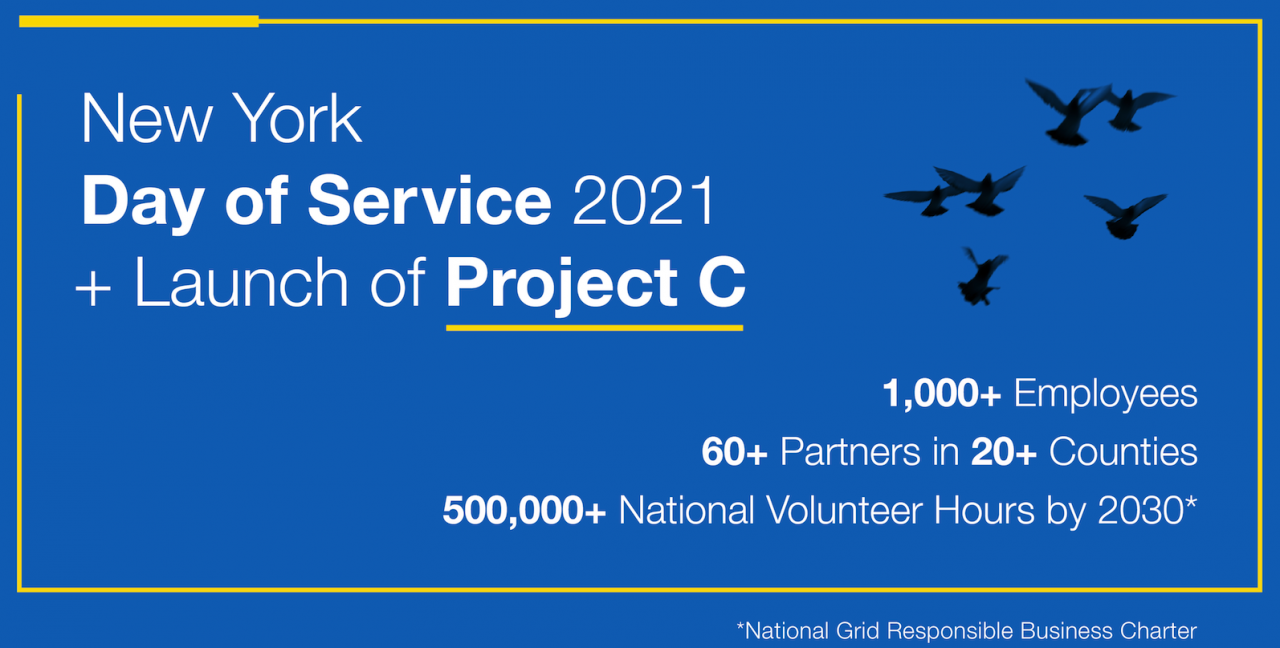 Project C infographic