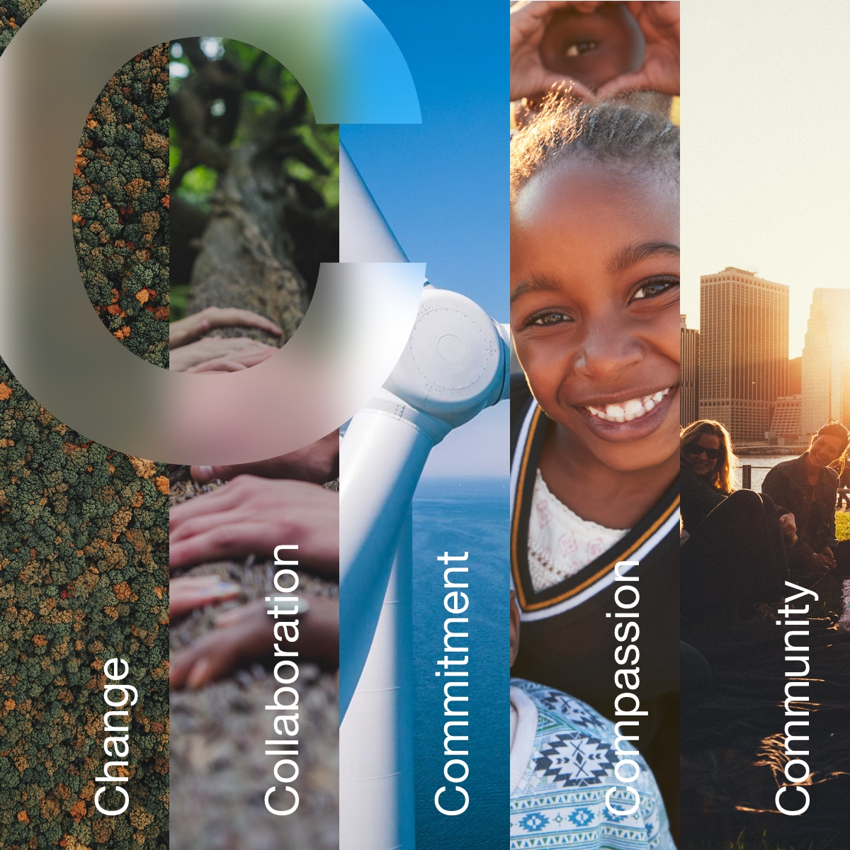 """Project C banner image reading """"Change, Collaboration, Commitment, Compassion, Community"""""""