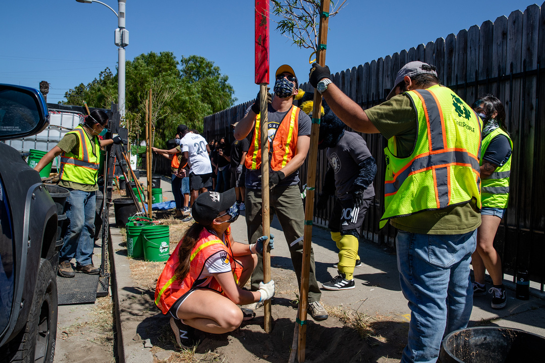 AEG and LA Galaxy staff team up with TreePeople to plant trees in a Watts neighborhood in Los Angeles in celebration of Earth Month