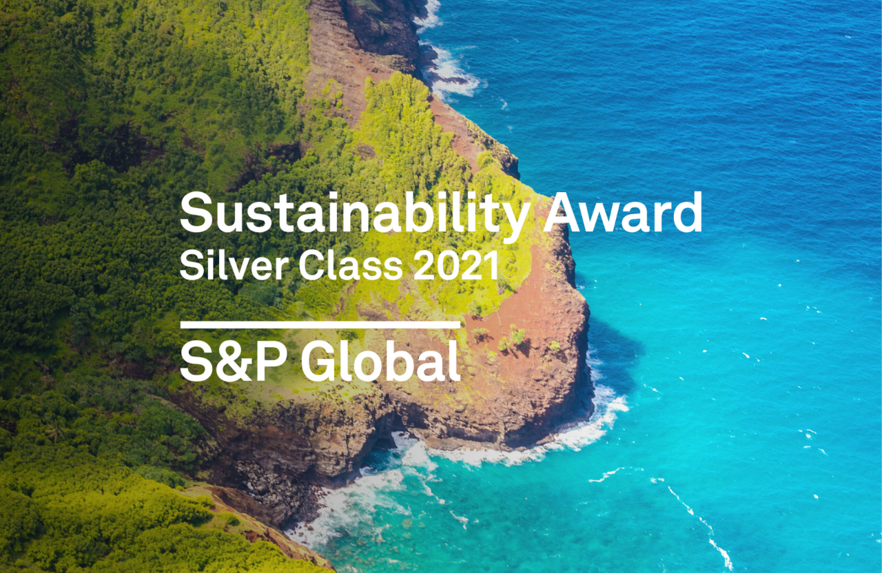 Sustainability Award Silver Class 2021 logo and image
