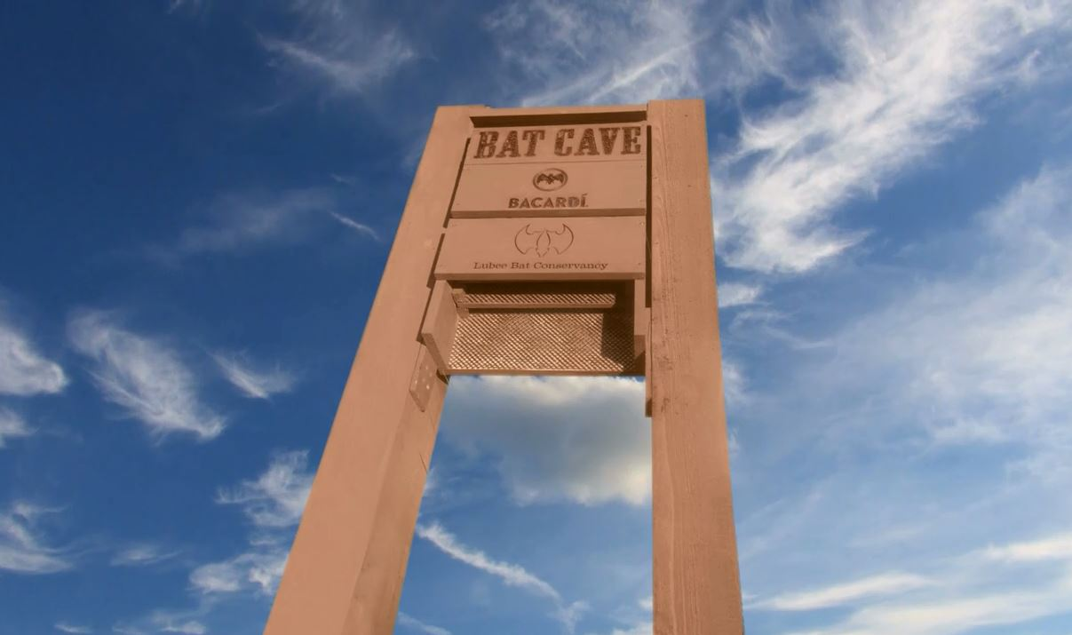 Image of the Bacardi bat cave sign