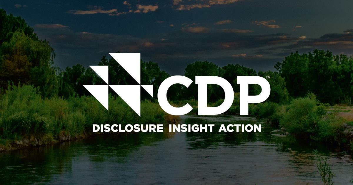 CDP Award Banner Image