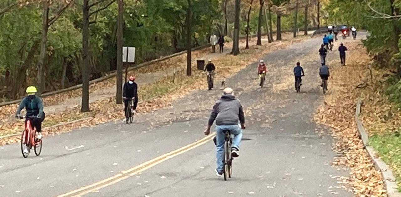 People bicycling on a path