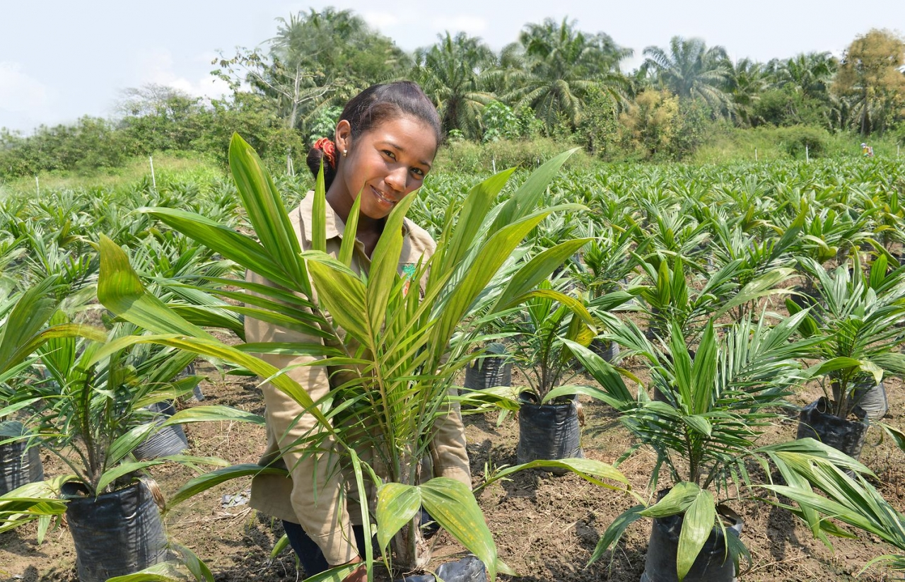 Person smiling while holding a palm tree to plant