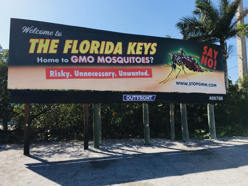 No to GMO Mosquito Billboard