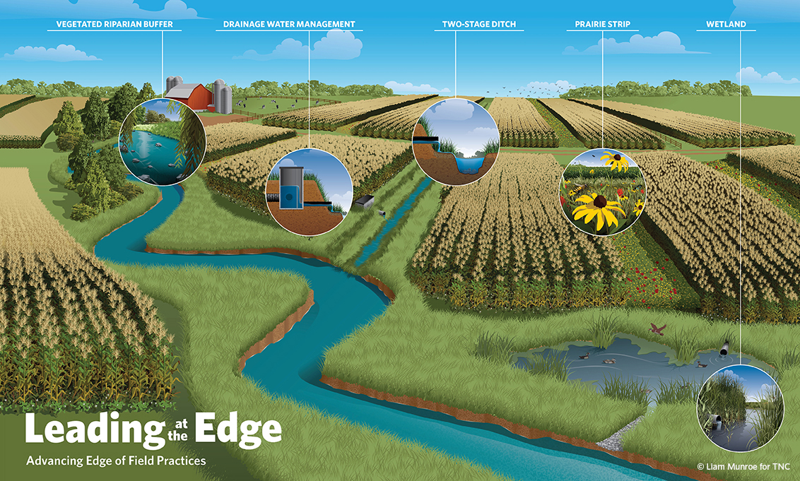 Examples of edge of field practices to better manage water and filter nutrients and sediments in runoff from fields. © Liam Munroe for TNC