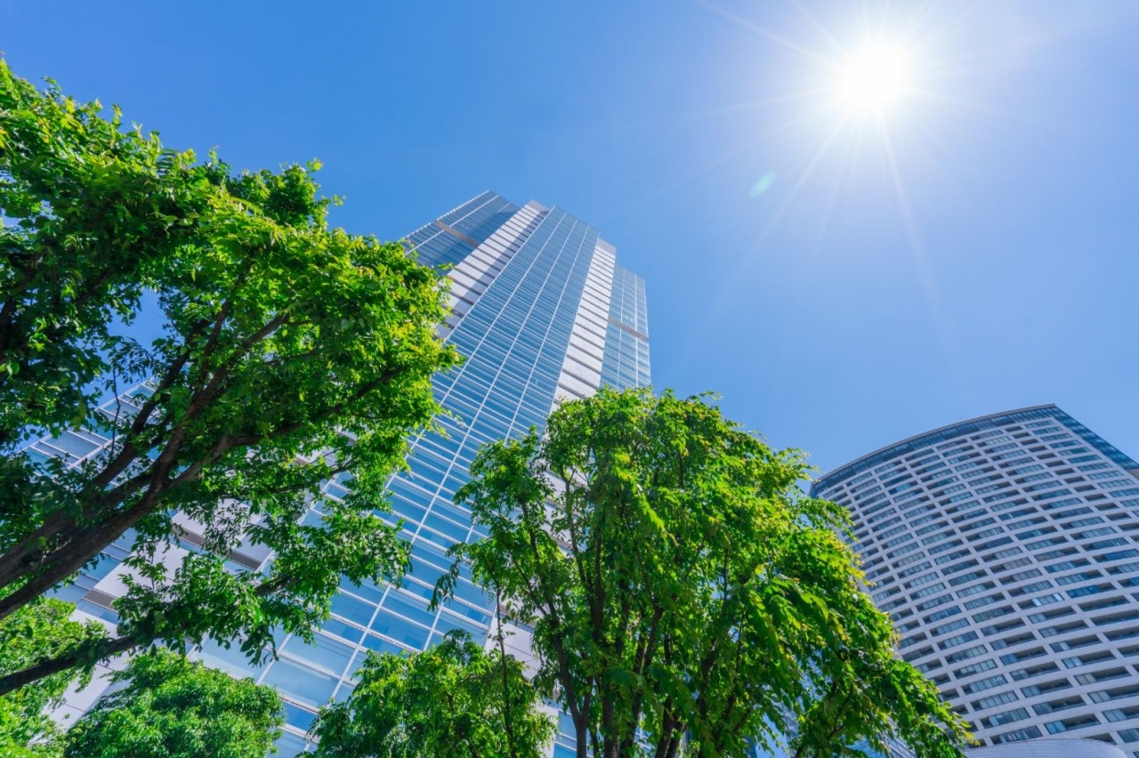Looking at the sky from under a tree and skyscraper