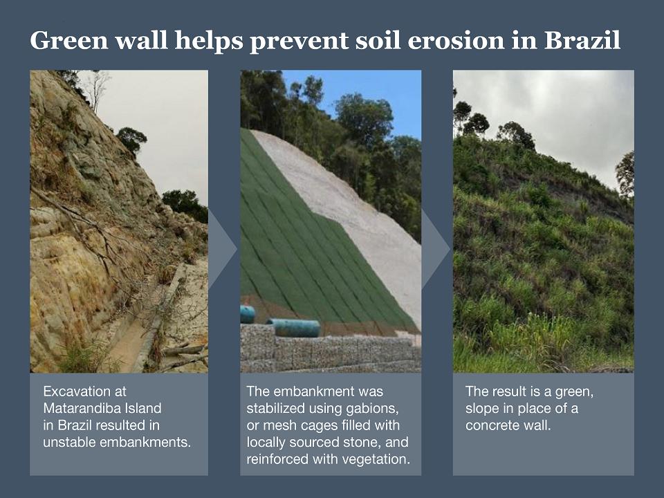 Green Wall Progression