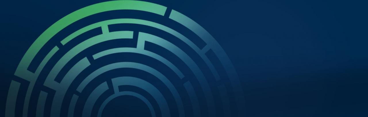 partial image of circular maze