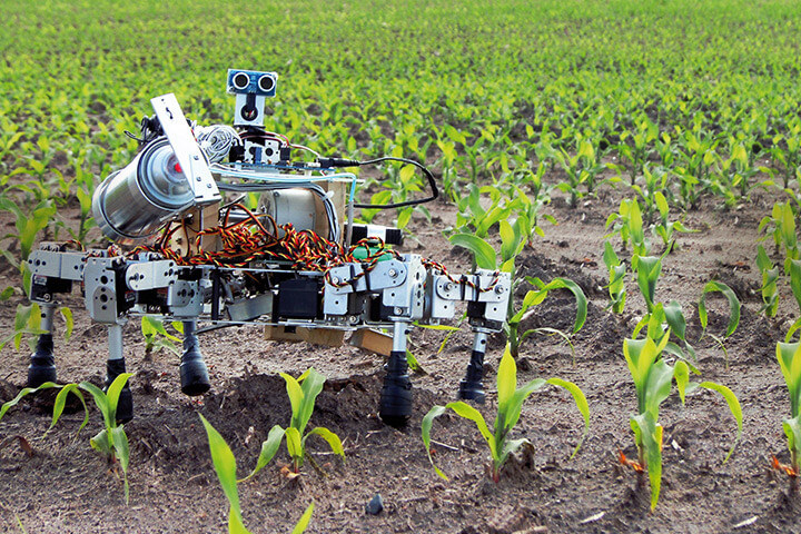 robot on the ground with crops