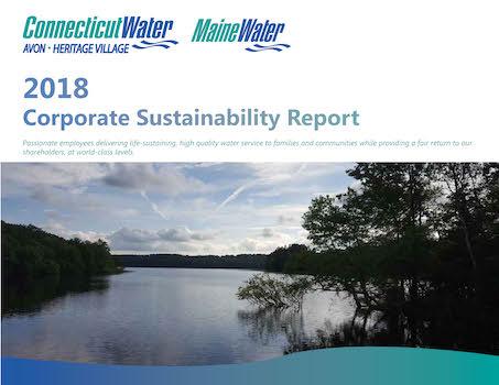 2018_Corporate_Sustainabilty_Report_-_Update_Draft.jpg