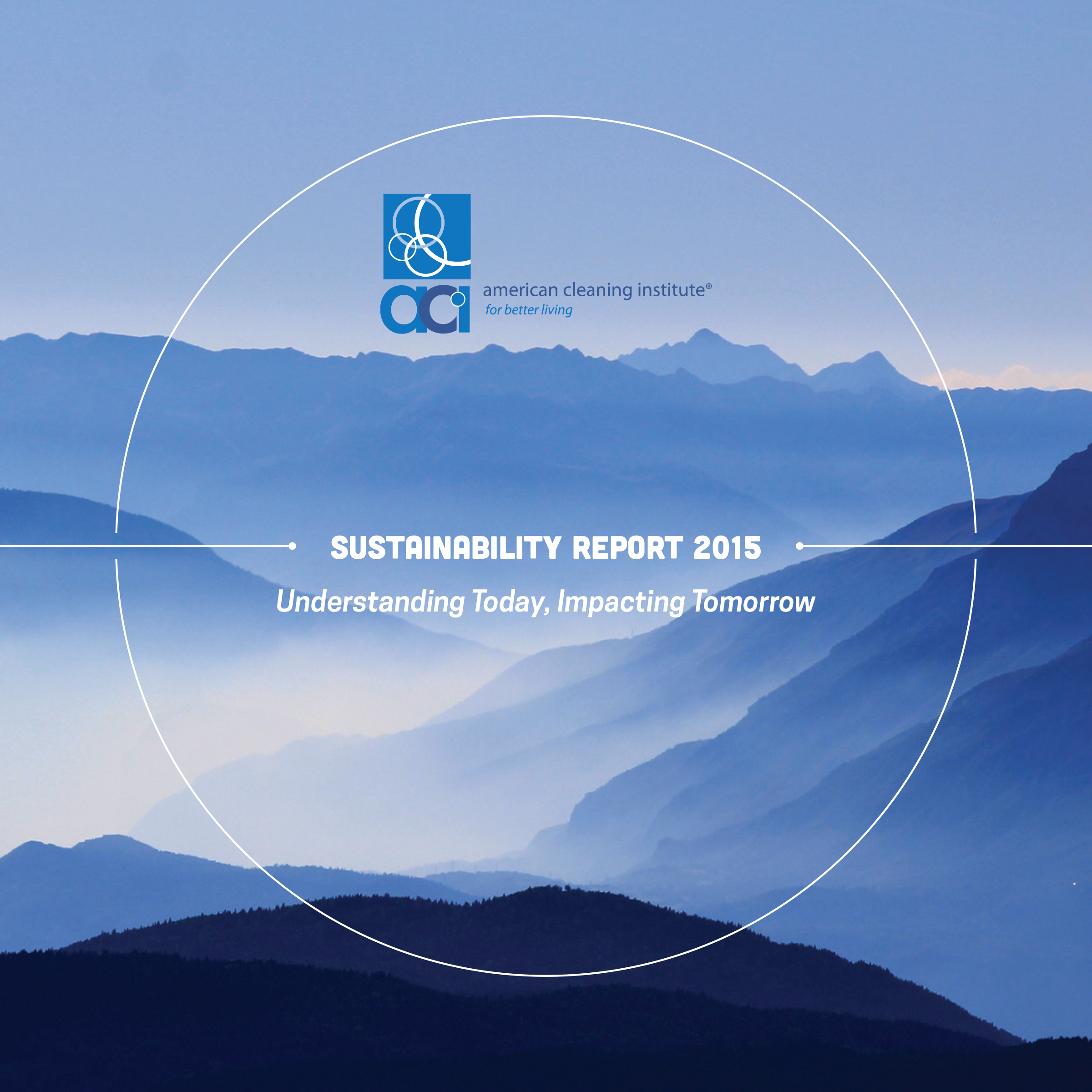 ACI Sustainability Report Cover Large_0.png