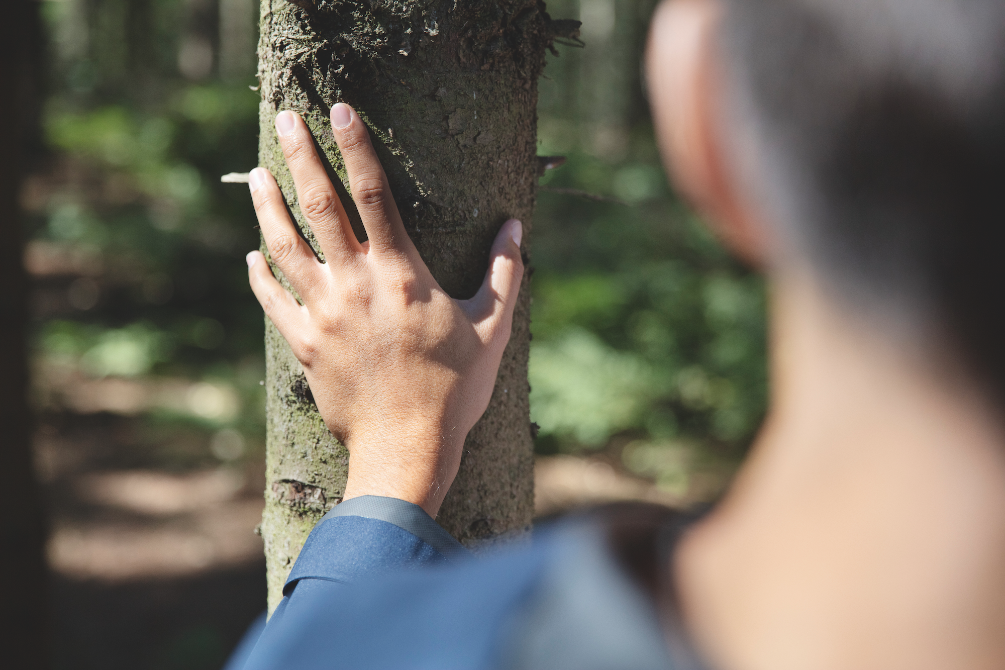 Person holding their hand on a tree