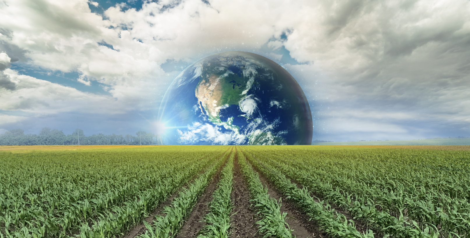 Earth looking over crops