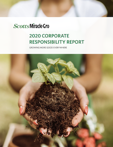 smg2020_ESG_Report.png