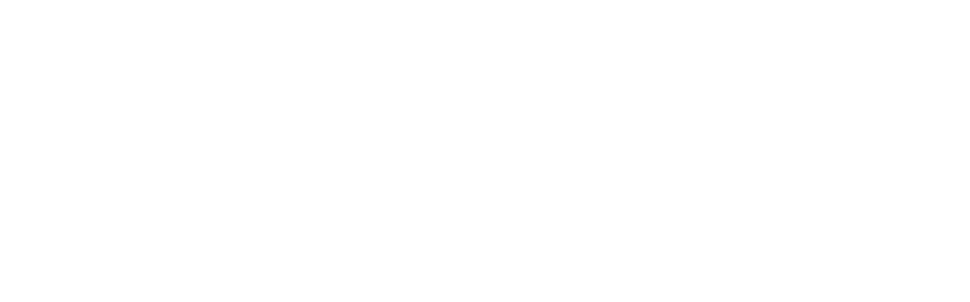 DSM Animal Nutrition and Health