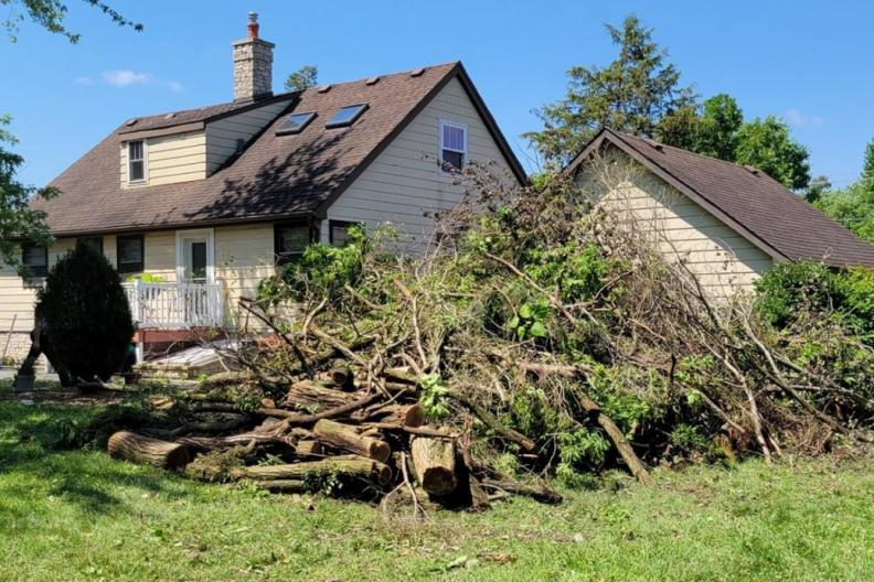 Tornado damage and downed trees in Burr Ridge, Illinois