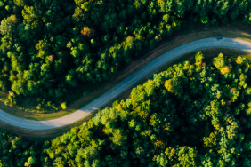 The Road to a Green Recovery Image