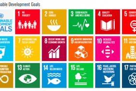 Business Alignment With The SDGs: Schneider's Journey Image