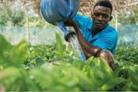 Hershey Announces Bold 2030 Goals to Reduce Environmental Footprint and Address Climate Change Image