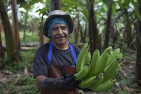Fair Trade USA Reveals Greater Shifts Toward Transparent and Ethical Sourcing in First Quarter Image