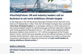 UN Global Compact Bulletin (June 2019) Image