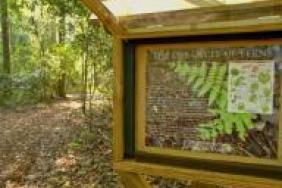 Albemarle Earns Wildlife Habitat Certification at Orangeburg Plant Site Image