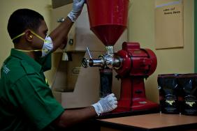 Freeport-McMoRan Invests in Indigenous-Owned Organic Coffee Cooperative Image
