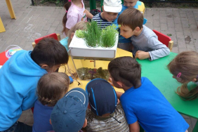 Back to the Roots® & Sodexo, Partner to Undo Food™ in Thousands of Schools Nationwide, Bringing Gardens into the Classroom Image