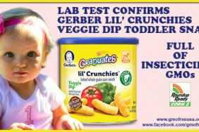 GMO Free USA Finds Gerber Lil' Crunchies Full of Insecticidal GMOs Image
