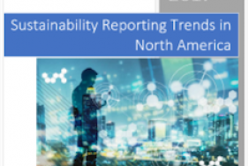 UN Sustainable Development Goals Set High Standards for North America Sustainability Reporting Image