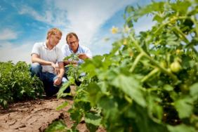 Bayer Provides Produce Growers With Holistic Approach to Field Challenges During First Ever Agriculture and Innovation Showcase Image