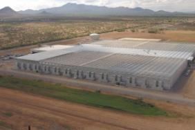 Bayer to Advance More Sustainable Agricultural Solutions Utilizing New Innovative Greenhouses in Marana, Arizona Image