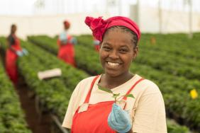 Fairtrade International and U.S. Chapter Fairtrade America Named Top Certification in Its Category  Image