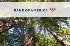 Arbor Day Foundation and Bank of America Drive Local Climate Resiliency Initiatives Image