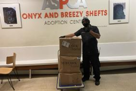 Mohawk Increases PPE Manufacturing, Donates Face Shields and Protective Gowns to the ASPCA® Image