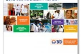 BD Issues 2010 Sustainability Report Image