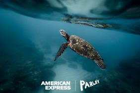 American Express and Parley for the Oceans Announce First-Ever Card Made Primarily With Reclaimed Plastic From Parley and Launch a Global Campaign to #BackOurOceans Image